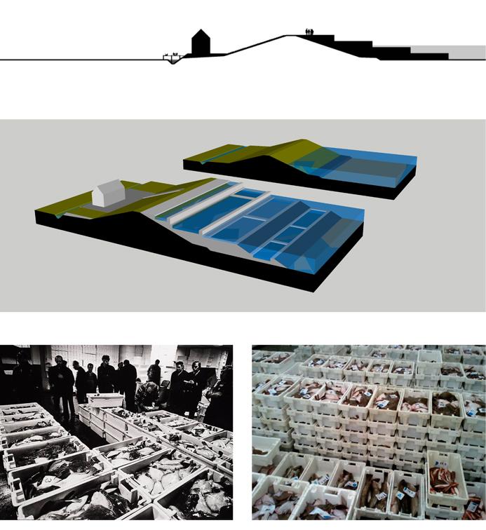 Architectural Things Planet Texel Oudeschild Cascade Dike